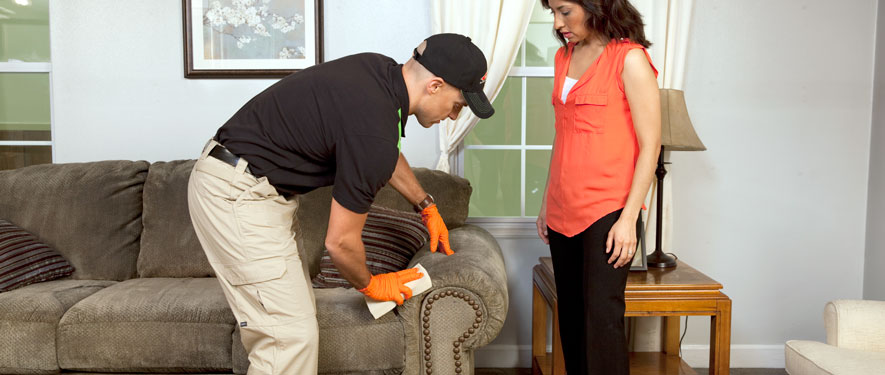 Yarmouth, MA carpet upholstery cleaning
